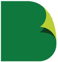 BtP Publishing logo